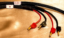 KLEI Purity speaker cable at Totally Wired